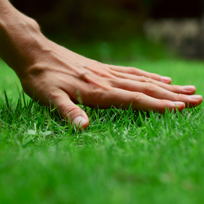 Grama Sintética Curitiba Renova Grass